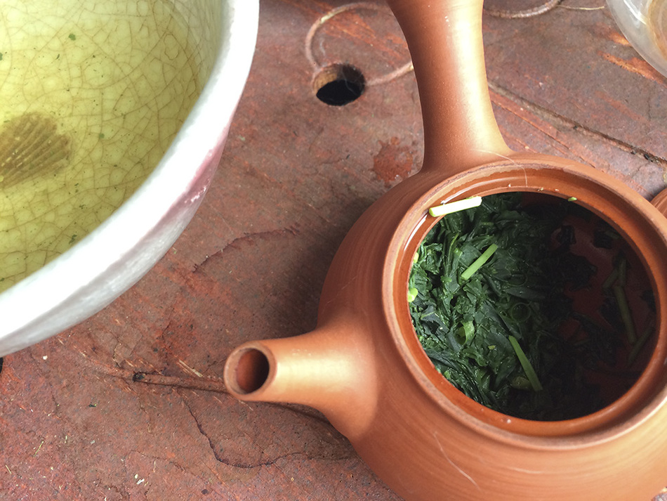 200930 Morning gyokuro IMG_1536 copy.jpg